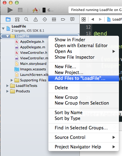 Reading Local JSON Files on iOS - onebigfunction